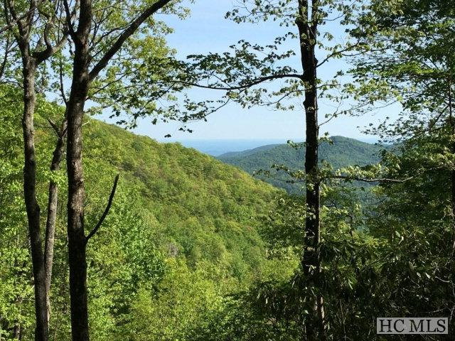 Lot 2 Yarak Drive, Sapphire, NC 28774 (MLS #83899) :: Berkshire Hathaway HomeServices Meadows Mountain Realty