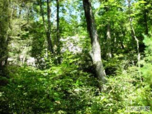 B6 Toll House Lane, Cashiers, NC 28717 (MLS #83941) :: Berkshire Hathaway HomeServices Meadows Mountain Realty