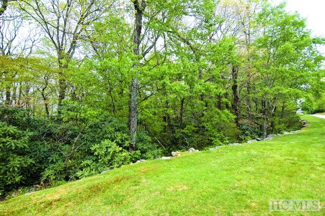 Lot 22 Highgate Road, Highlands, NC 28741 (MLS #83957) :: Berkshire Hathaway HomeServices Meadows Mountain Realty