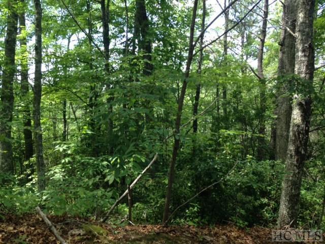 123 Stoneway Drive, Tuckasegee, NC 28783 (MLS #84630) :: Lake Toxaway Realty Co
