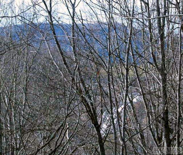 38-lot # Falls View Drive, Lake Toxaway, NC 28747 (MLS #84665) :: Lake Toxaway Realty Co
