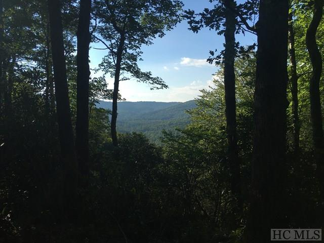 Lot 73 Firesong Lane, Glenville, NC 28736 (MLS #84695) :: Berkshire Hathaway HomeServices Meadows Mountain Realty