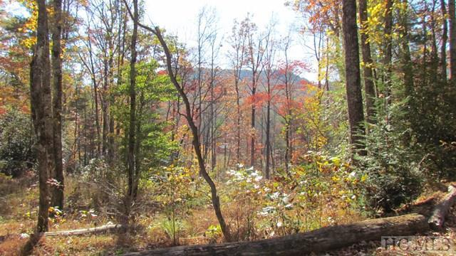 0000 Upper Whitewater Road, Sapphire, NC 28774 (MLS #84991) :: Lake Toxaway Realty Co