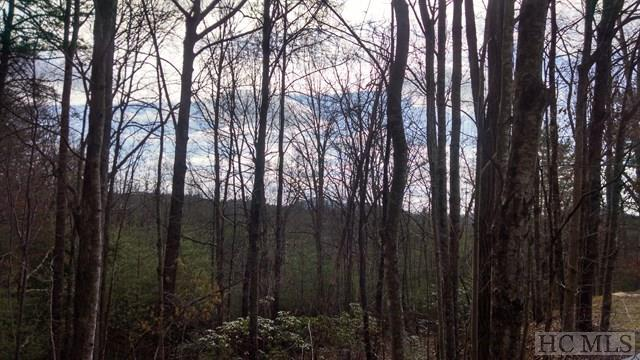 N/A Windy Hill Road, Highlands, NC 28741 (MLS #85230) :: Berkshire Hathaway HomeServices Meadows Mountain Realty