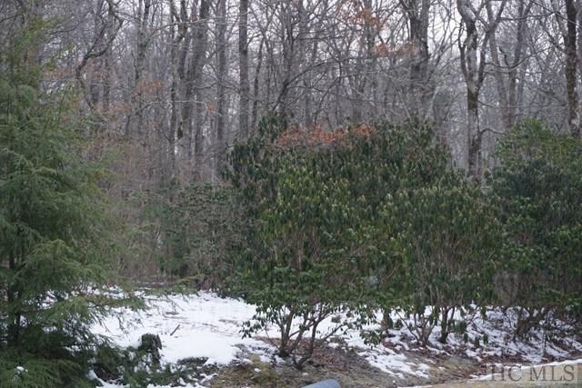 TBD Wildwood Drive, Highlands, NC 28741 (MLS #85418) :: Berkshire Hathaway HomeServices Meadows Mountain Realty