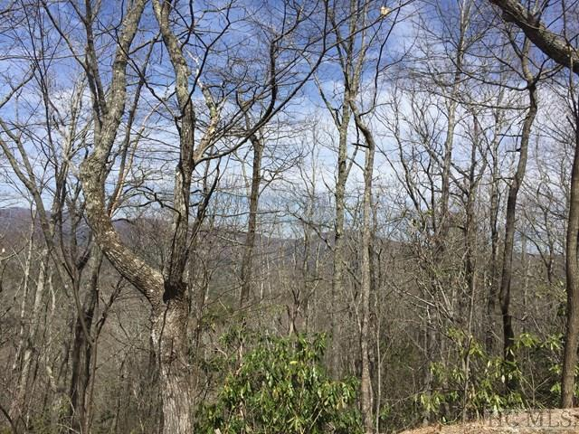 Lot 6 Windy Gap Lane, Sapphire, NC 28774 (MLS #85466) :: Berkshire Hathaway HomeServices Meadows Mountain Realty