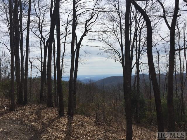 Lot 9 Windy Gap Lane, Sapphire, NC 28774 (MLS #85468) :: Berkshire Hathaway HomeServices Meadows Mountain Realty