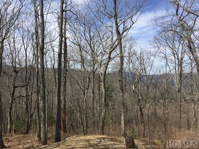 Lot 11 Windy Gap Lane, Sapphire, NC 28774 (MLS #85469) :: Berkshire Hathaway HomeServices Meadows Mountain Realty