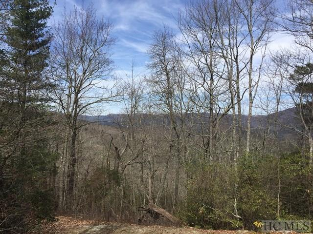 Lot 17 Black Bear Court, Sapphire, NC 28774 (MLS #85473) :: Berkshire Hathaway HomeServices Meadows Mountain Realty
