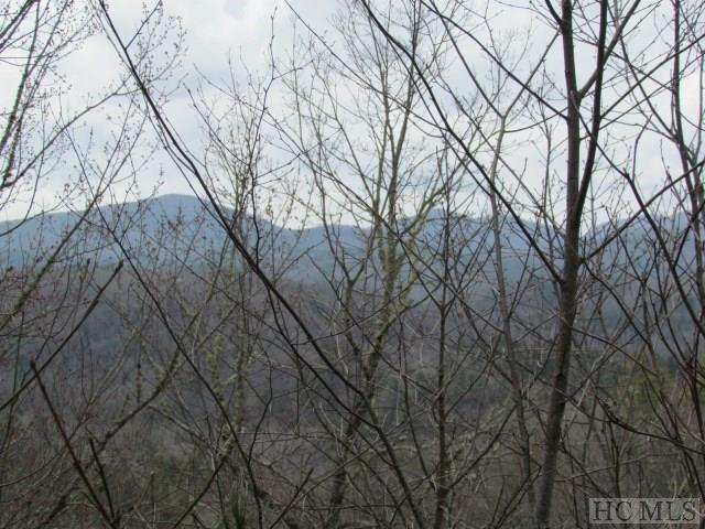 Lot 1 Forest Ridge Road, Cashiers, NC 28717 (MLS #85509) :: Berkshire Hathaway HomeServices Meadows Mountain Realty