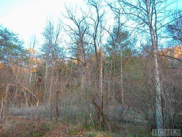 NA Monteith Gap Road, Cullowhee, NC 28723 (MLS #85514) :: Lake Toxaway Realty Co