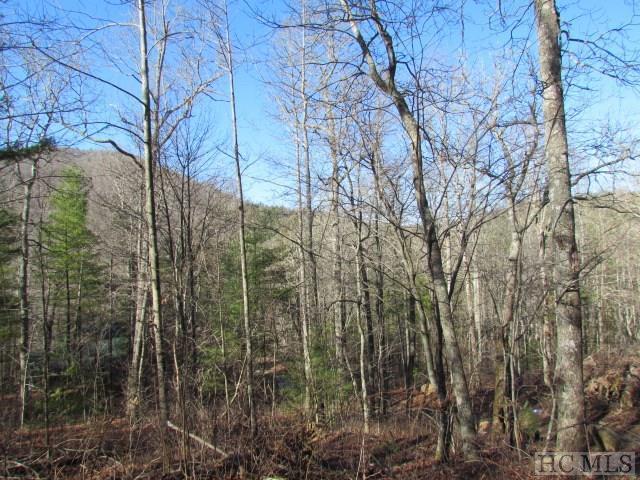 000 Western Rhodes Road, Highlands, NC 28741 (MLS #85525) :: Lake Toxaway Realty Co