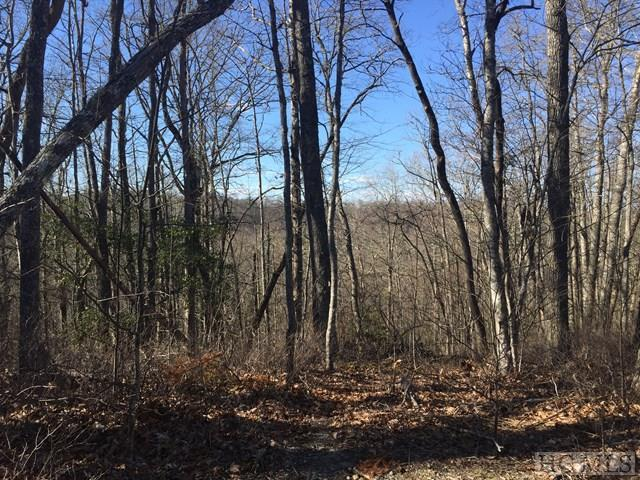 Lot 5 Park View Lane, Cullowhee, NC 28723 (MLS #85588) :: Berkshire Hathaway HomeServices Meadows Mountain Realty