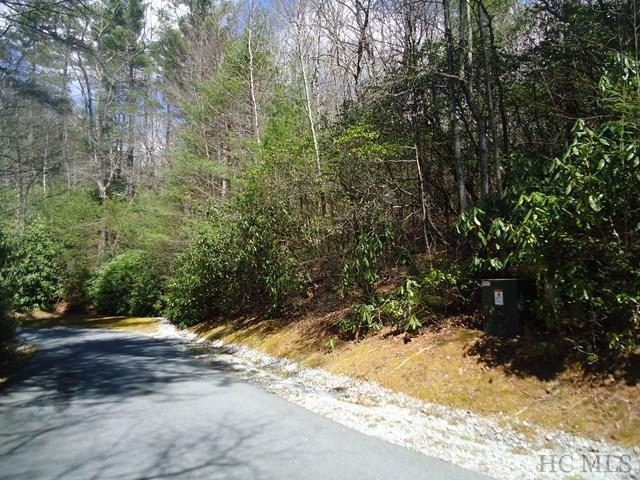 21 Indian Lake Road, Lake Toxaway, NC 28747 (MLS #85661) :: Berkshire Hathaway HomeServices Meadows Mountain Realty