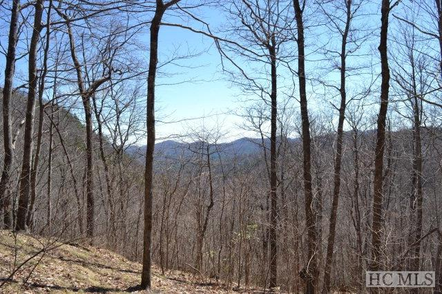 Lot 36 Continental Drive, Sapphire, NC 28774 (MLS #85677) :: Berkshire Hathaway HomeServices Meadows Mountain Realty