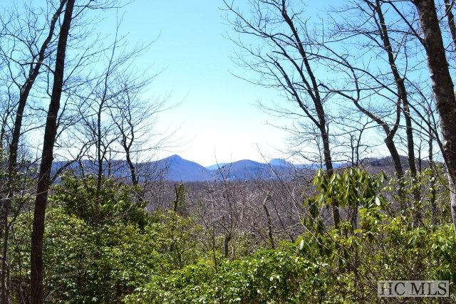 Lot 40 Continental Drive, Sapphire, NC 28774 (MLS #85680) :: Berkshire Hathaway HomeServices Meadows Mountain Realty