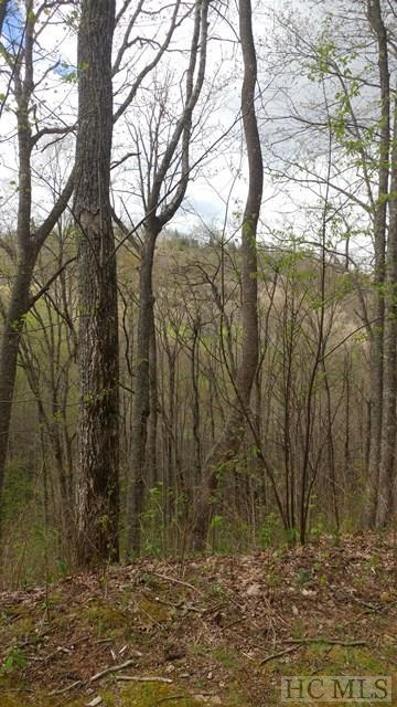 Lot 4 N Captiva Mt Drive, Cullowhee, NC 28723 (MLS #85795) :: Berkshire Hathaway HomeServices Meadows Mountain Realty