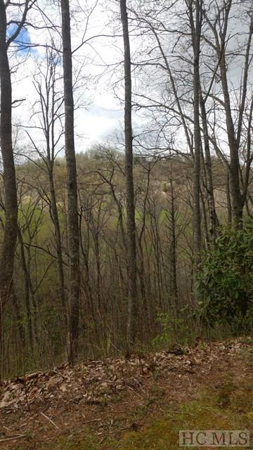 Lot 5 North Captiva Mountain, Cullowhee, NC 28723 (MLS #85796) :: Berkshire Hathaway HomeServices Meadows Mountain Realty