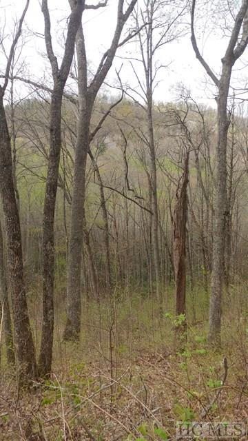 Lot 7 Captiva Mountain Drive, Cullowhee, NC 28723 (MLS #85798) :: Pat Allen Realty Group