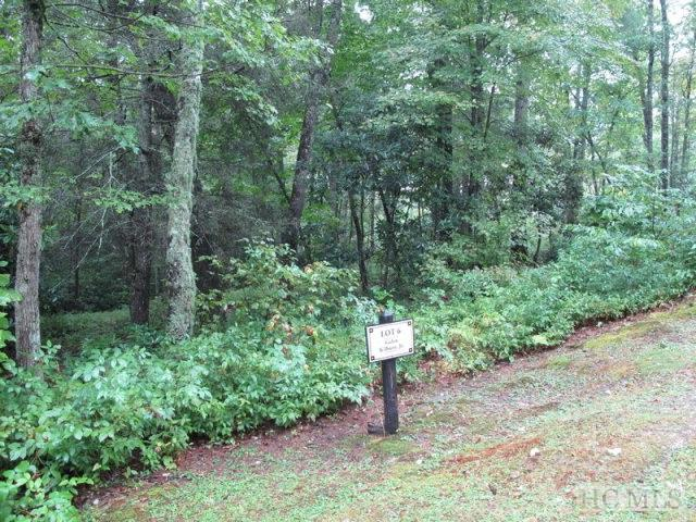 Lot 6 Craftsman Way, Cashiers, NC 28717 (MLS #85810) :: Berkshire Hathaway HomeServices Meadows Mountain Realty