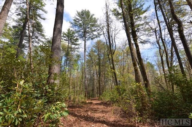 Lot N-39 Chimney Top Tr., Cashiers, NC 28717 (MLS #85830) :: Berkshire Hathaway HomeServices Meadows Mountain Realty