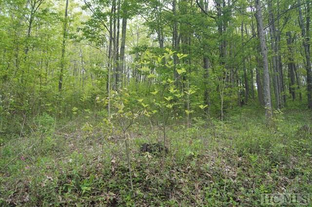 LOT 62 Fowler Road, Glenville, NC 28736 (MLS #85891) :: Berkshire Hathaway HomeServices Meadows Mountain Realty