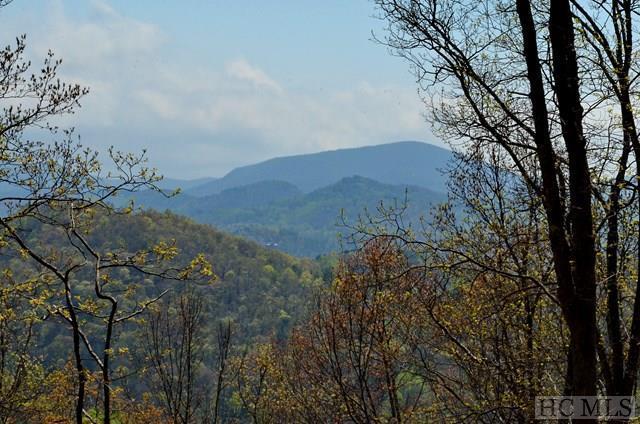 Lot 41 Beechfern Drive, Glenville, NC 28736 (MLS #85946) :: Berkshire Hathaway HomeServices Meadows Mountain Realty