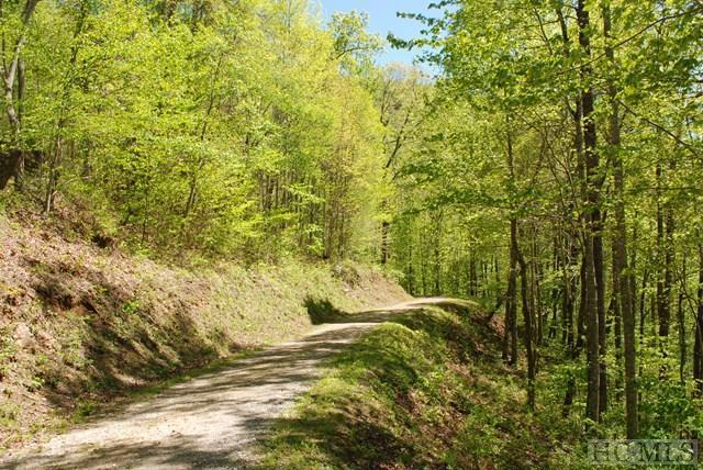 Lot #52 Parachute Ridge, Glenville, NC 28736 (MLS #86002) :: Berkshire Hathaway HomeServices Meadows Mountain Realty