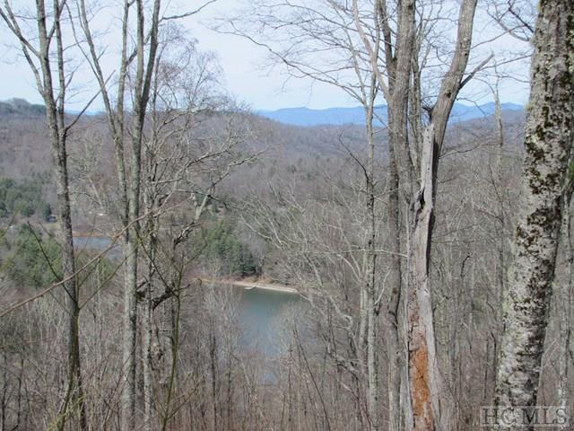 39 Greycliff Mountain Drive, Glenville, NC 28736 (MLS #86020) :: Berkshire Hathaway HomeServices Meadows Mountain Realty