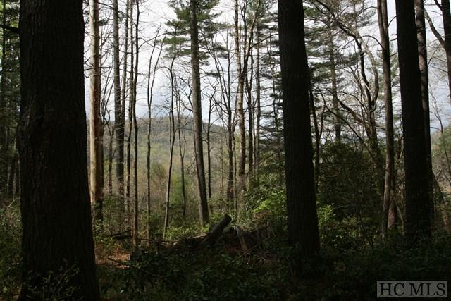 Lot 4 Pine Forest, Sapphire, NC 28717 (MLS #86051) :: Lake Toxaway Realty Co