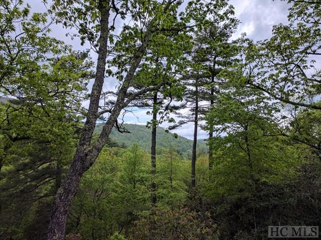 LOT 23 Piney Knob Trail, Cashiers, NC 28717 (MLS #86058) :: Berkshire Hathaway HomeServices Meadows Mountain Realty