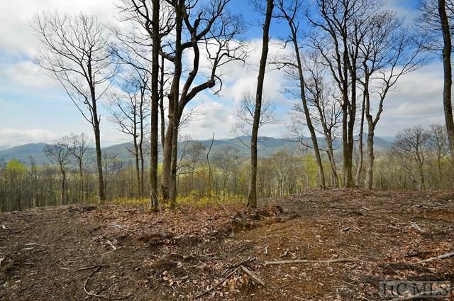 Lot 2 Fox Run Ridge Road, Sapphire, NC 28774 (MLS #86146) :: Berkshire Hathaway HomeServices Meadows Mountain Realty