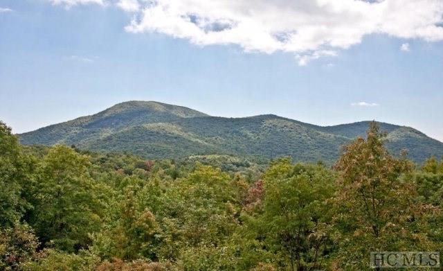 0 Ford Mountain Rd, Dillard, GA 30537 (MLS #86183) :: Berkshire Hathaway HomeServices Meadows Mountain Realty