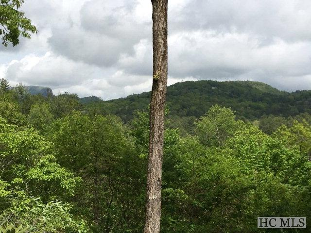 135 Wyanoak Road, Highlands, NC 28741 (MLS #86193) :: Berkshire Hathaway HomeServices Meadows Mountain Realty
