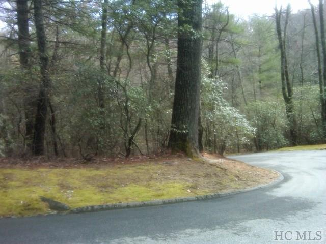 lot L-2 Silver Springs Road, Cashiers, NC 28717 (MLS #86273) :: Lake Toxaway Realty Co
