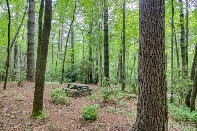 Lot 10 Lonesome Valley Rd, Sapphire, NC 28774 (MLS #86291) :: Berkshire Hathaway HomeServices Meadows Mountain Realty