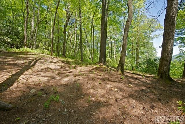 Lot 69 Lonesome Valley Rd, Sapphire, NC 28774 (MLS #86297) :: Berkshire Hathaway HomeServices Meadows Mountain Realty