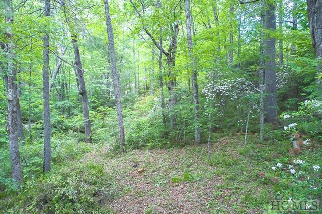 Lot 1 Ravenel Lake Trail, Highlands, NC 28741 (MLS #86354) :: Landmark Realty Group
