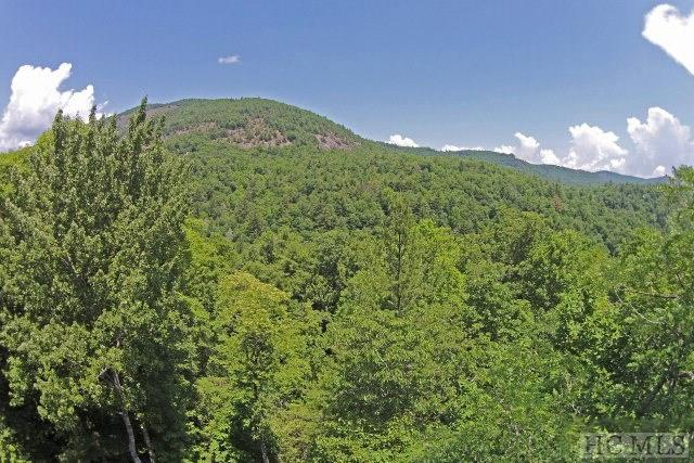 Lot 58 Wandering Ridge, Cashiers, NC 28717 (MLS #86453) :: Berkshire Hathaway HomeServices Meadows Mountain Realty
