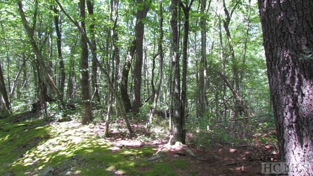 Lot #R46 Ox Lock Road, Cashiers, NC 28717 (MLS #86548) :: Lake Toxaway Realty Co