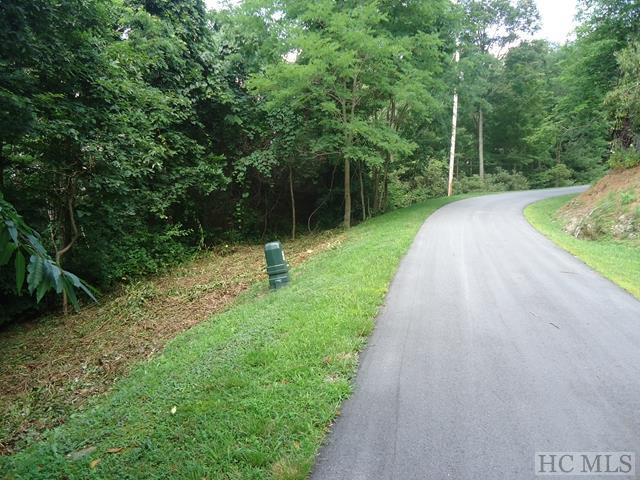 49&69 Sheep Hollow Way, Cashiers, NC 28717 (MLS #86555) :: Berkshire Hathaway HomeServices Meadows Mountain Realty