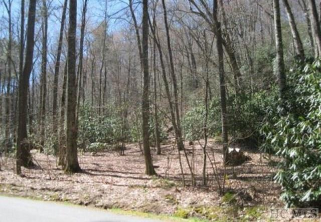 Lot #2 Cherokee Views, Cashiers, NC 28717 (MLS #86587) :: Berkshire Hathaway HomeServices Meadows Mountain Realty