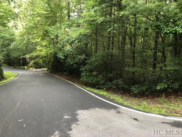 69 Gold Creek Road, Sapphire, NC 28774 (MLS #86616) :: Landmark Realty Group