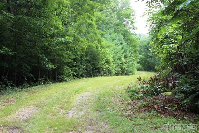 Tract C Waddle Branch Road, Sapphire, NC 28774 (MLS #86689) :: Lake Toxaway Realty Co
