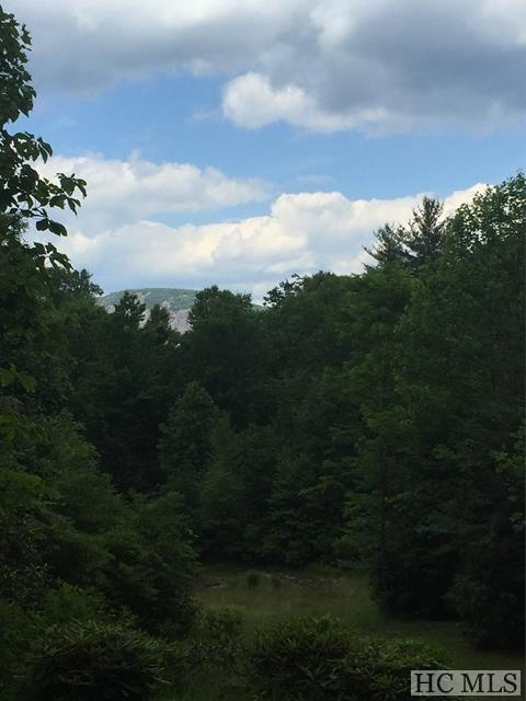 Lot 29 Elbow Creek, Cashiers, NC 28727 (MLS #86703) :: Berkshire Hathaway HomeServices Meadows Mountain Realty