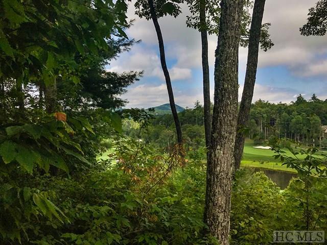 E-125 Burl Lane, Cashiers, NC 28717 (MLS #86730) :: Berkshire Hathaway HomeServices Meadows Mountain Realty