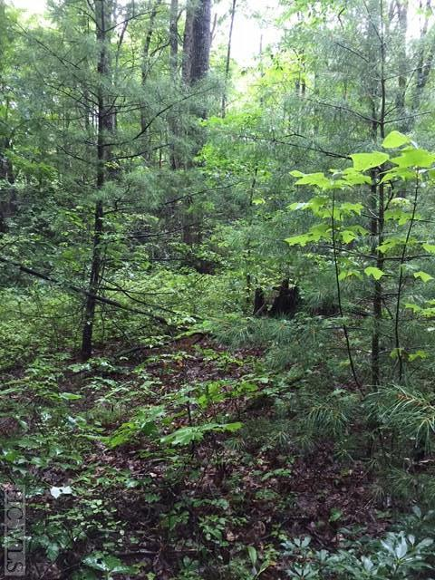 Lot 19 South East Ridge Road, Cashiers, NC 28717 (MLS #86732) :: Berkshire Hathaway HomeServices Meadows Mountain Realty