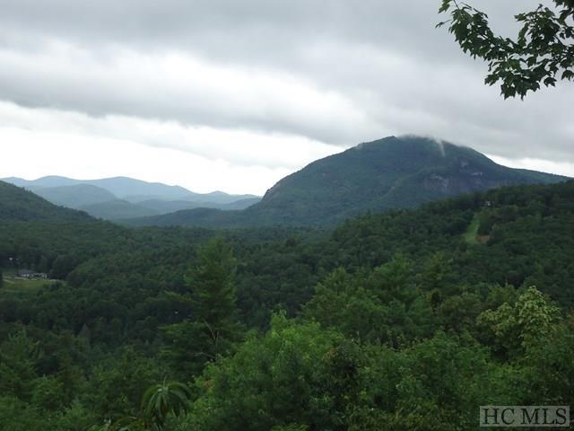 350 Wild Ridge Road, Cashiers, NC 28717 (MLS #86780) :: Berkshire Hathaway HomeServices Meadows Mountain Realty