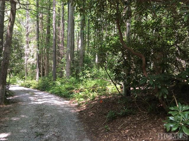TBD Brooks Road, Highlands, NC 28741 (MLS #86792) :: Lake Toxaway Realty Co