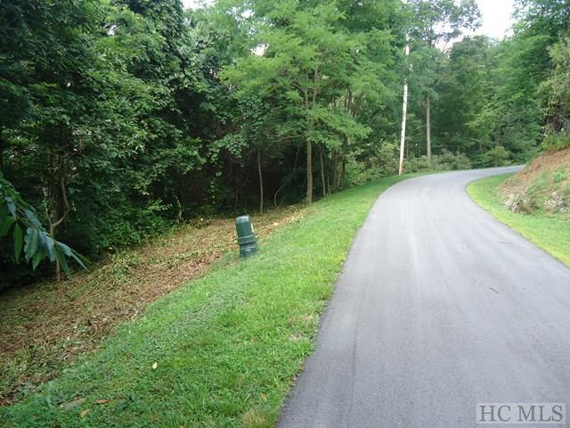 49 Kerry Hill Road, Cashiers, NC 28717 (MLS #86824) :: Berkshire Hathaway HomeServices Meadows Mountain Realty